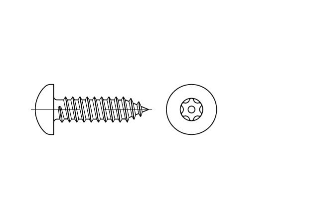 SN 88114 Blachowkręt z łbem walcowym z gniazdem przeciwkradzieżowym