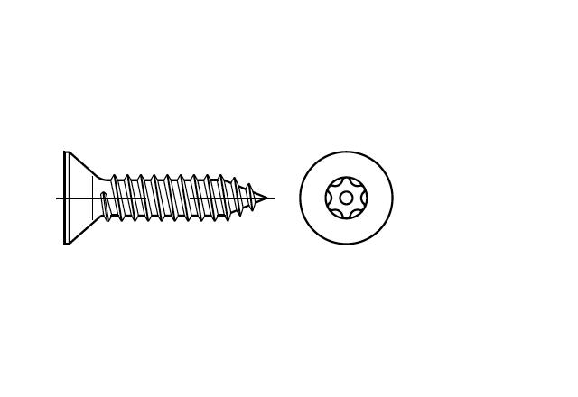 SN 88115 Blachowkręt z łbem stożkowym z gniazdem przeciwkradzieżowym